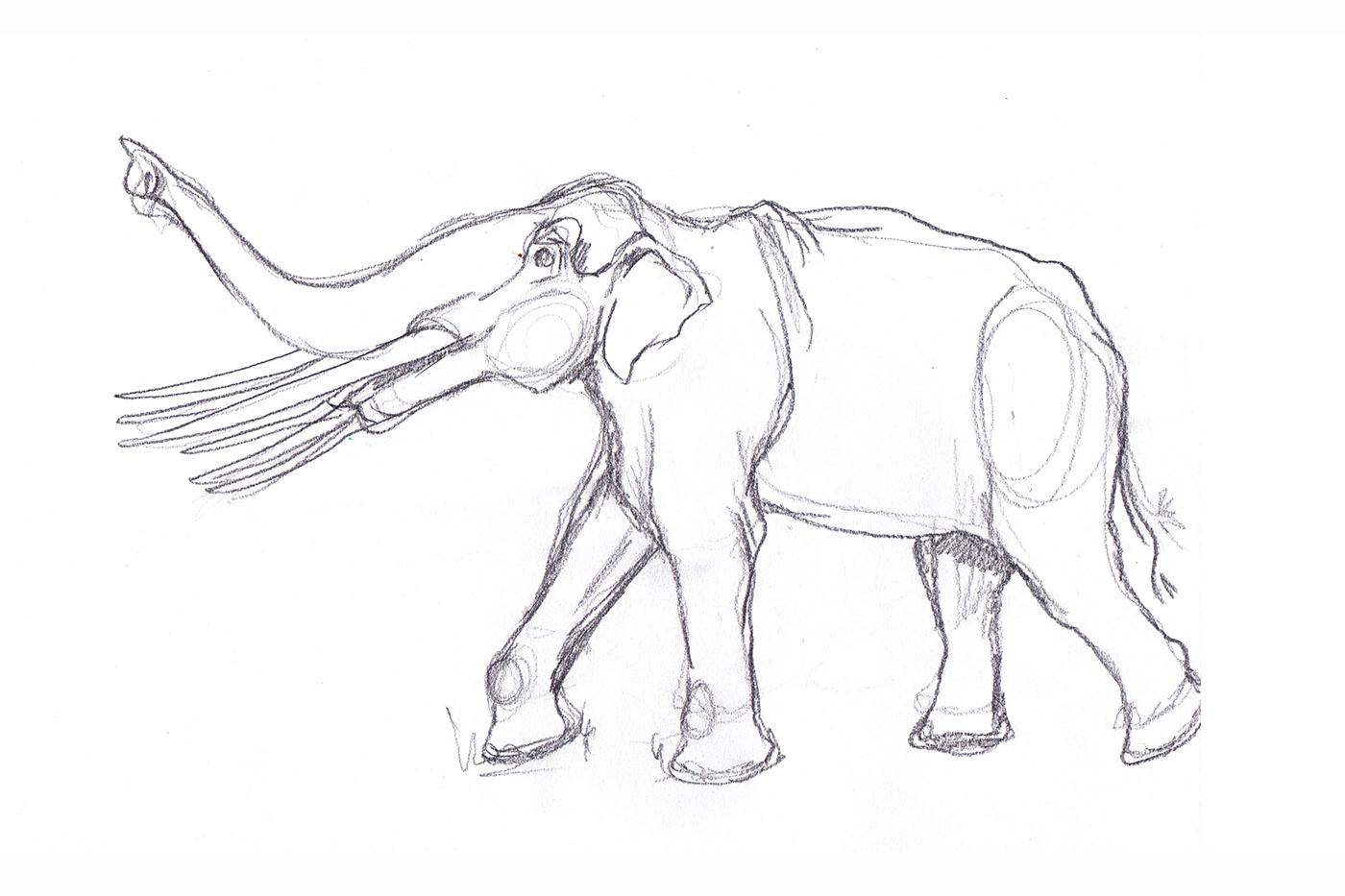 Elephant_Prep1